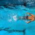 OD 6 maja wznawiamy zajęcia szkoły pływania!